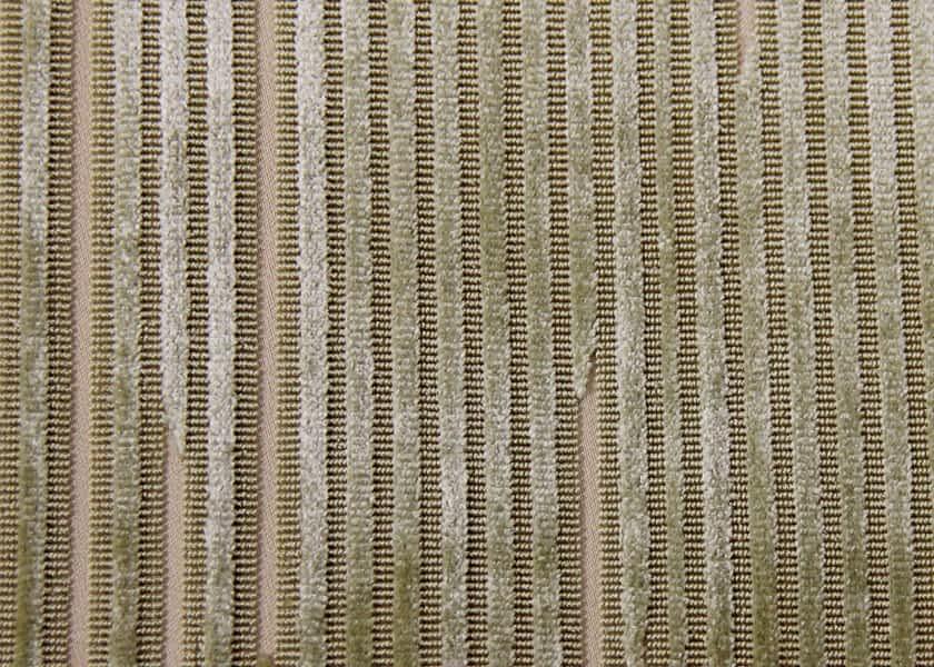 broken-stripe-lichen.jpg