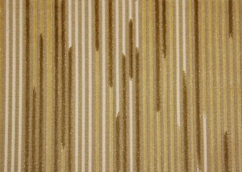 broken-stripe-savannah.jpg